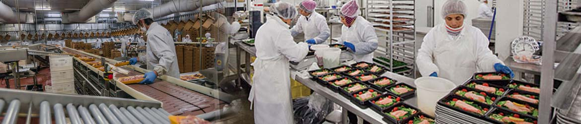 Food Production Facilities