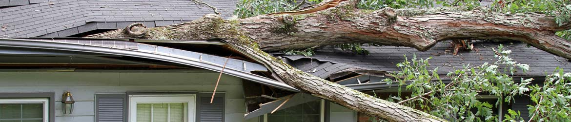 Roof Damage Caused From A Storm in Durango, Farmington, Cortez & Pagosa Springs