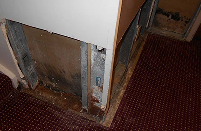 Primary areas where mold grows