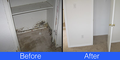Mold damage before and after cleaning