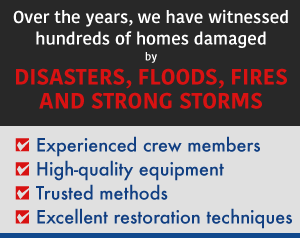 Natural Disaster Services