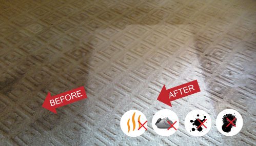 Carpet Cleaning Services in Durango, Farmington, Cortez, and Pagosa Springs