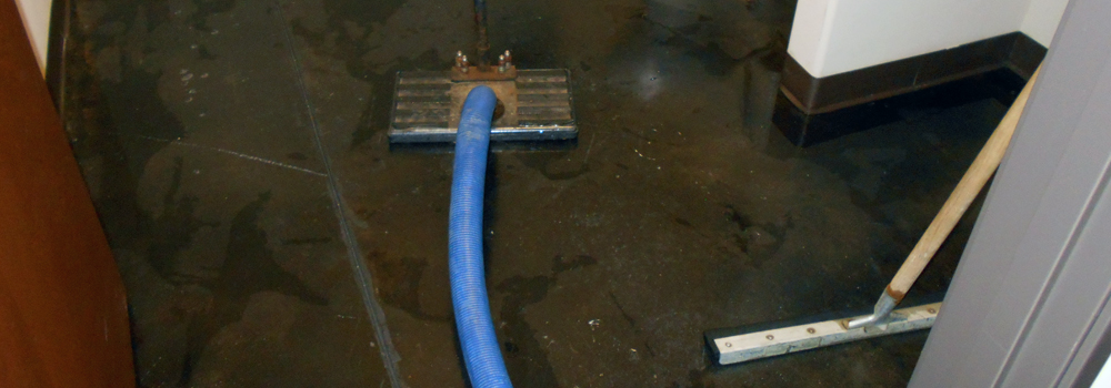 Water Damage Restoration Service in Durango, Farmington, Cortez, and Pagosa Springs