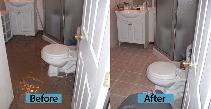 Toilet Overflow before and after cleaning