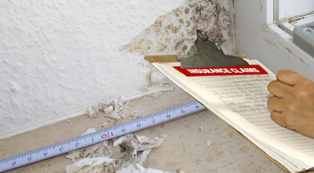 Water Damage Insurance Claims Assistance